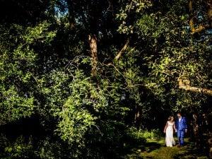 trouwfotograaf-Zeeland-Astrid-bruidspaar-bos