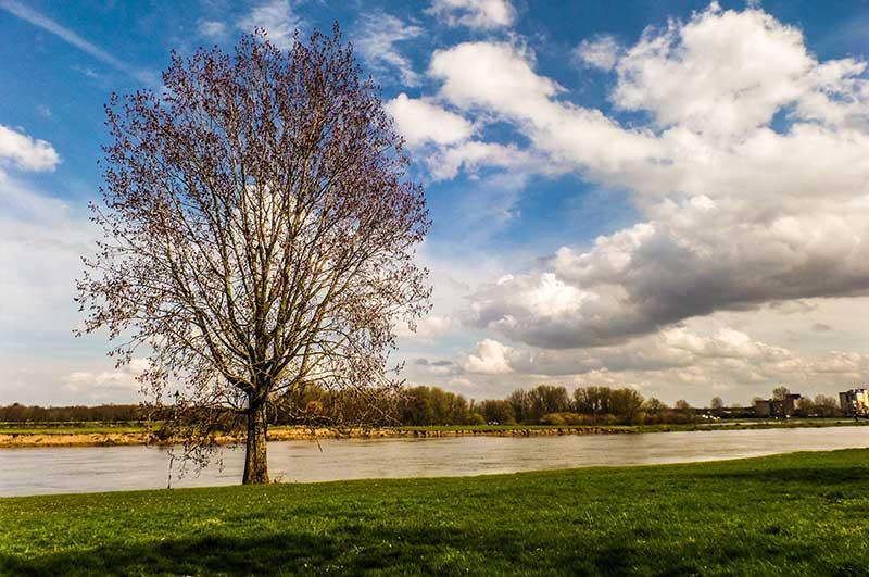 Goedkope fotograaf Den Bosch, Pim